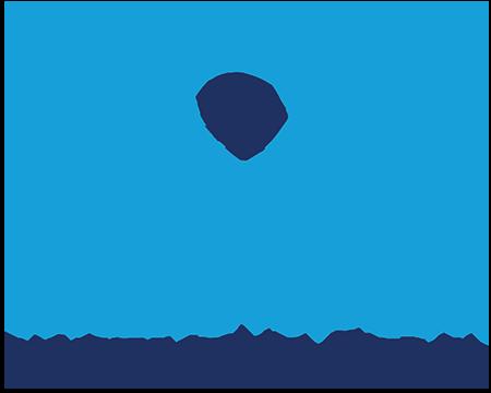 Birthright Israel Foundation company